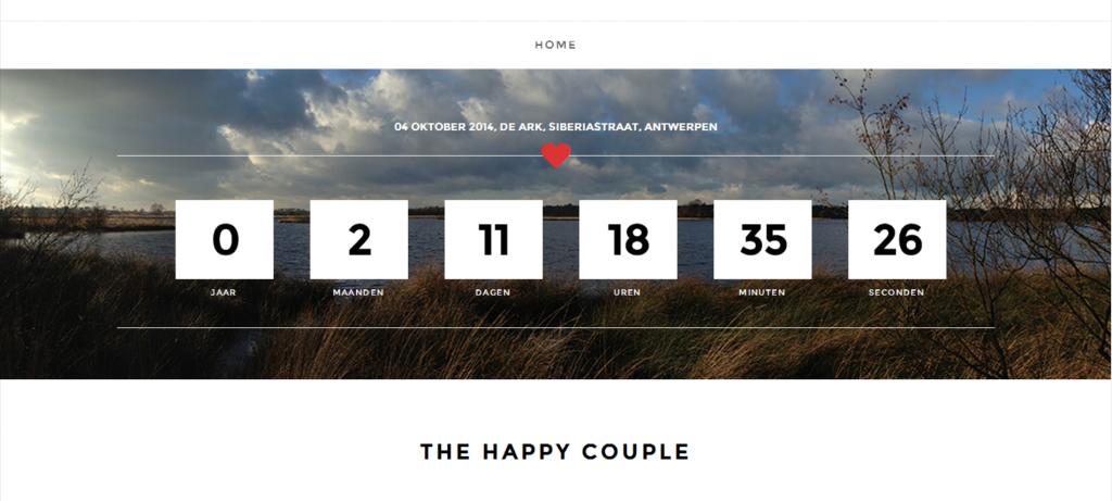 verloving aankondigen met website