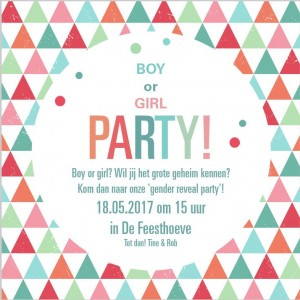 gender reveal party TA1327-1600018-03