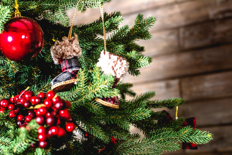 Een echte of een kunst kerstboom?