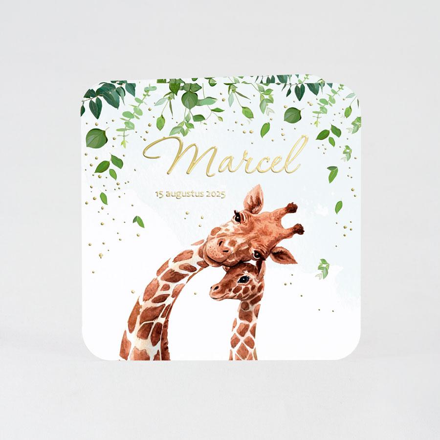 Geboortekaartje met giraffen